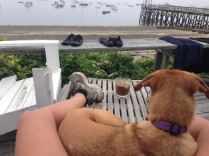 Our morning iced coffee after a run in Maine