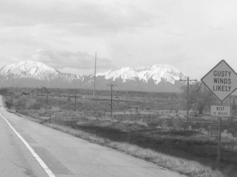 Spanish Peaks - the West one summited by the Lion a few years back