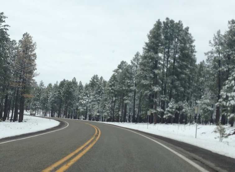 One hour from the South Rim of the Grand Canyon April 26
